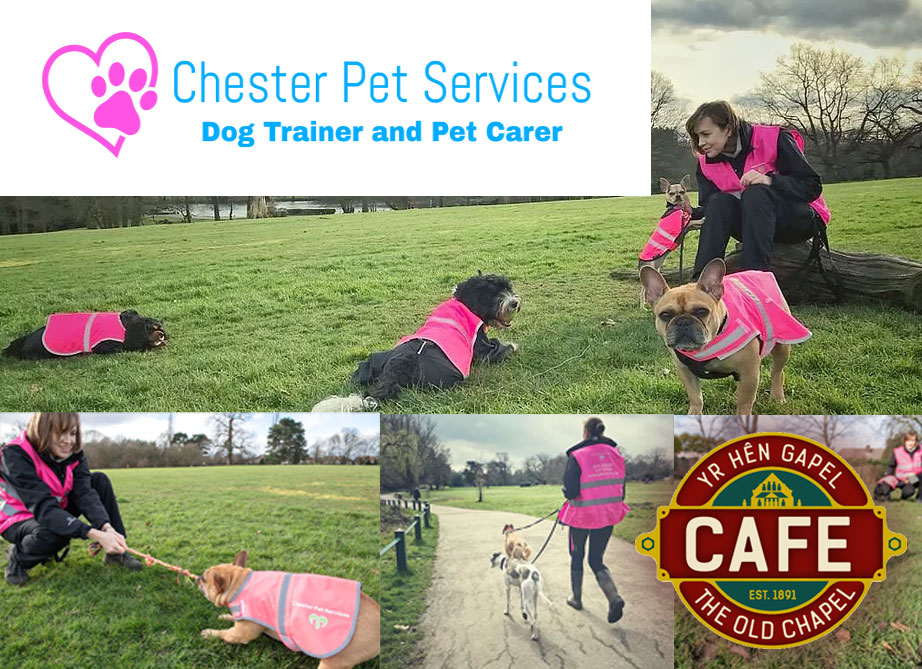 chester pet services